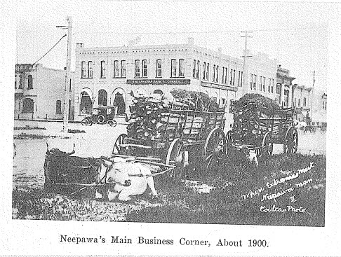 "A.F. Mackenzie - ""A Brief History of Neepawa - Land of Plenty"" 1958"